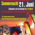 Lange Sommernacht 2013